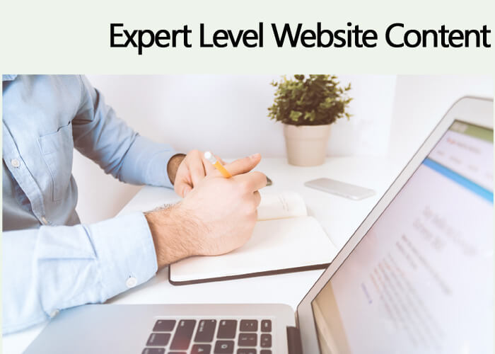 EXPERT Level Website Content – $3 /100 Words
