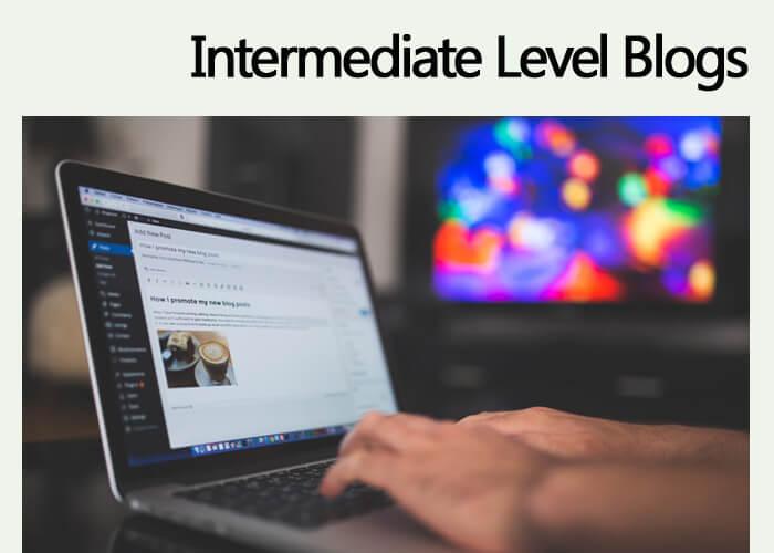 INTERMEDIATE Level Blogs – $2 /100 Words