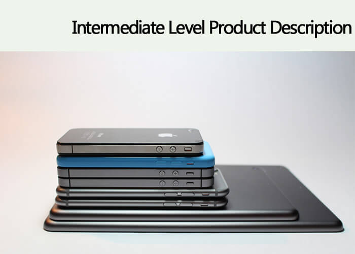 INTERMEDIATE Level Product Description – $2 /100 Words