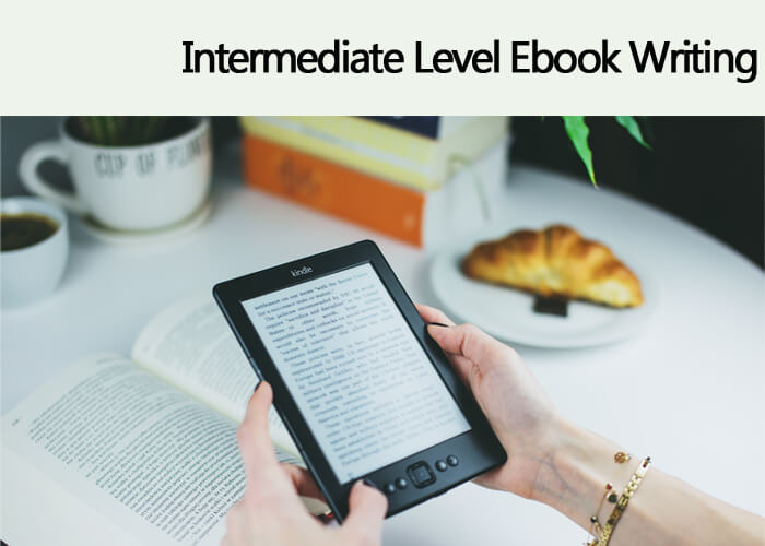 INTERMEDIATE Level Ebook Writing – $2 /100 Words
