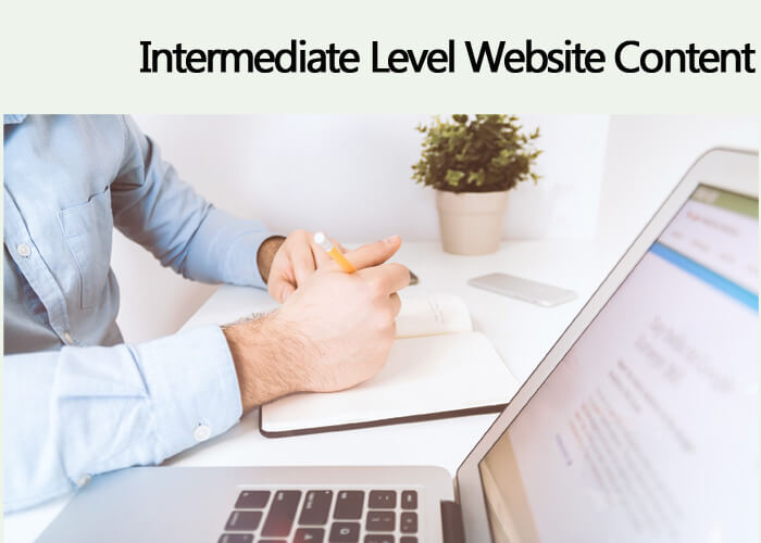 INTERMEDIATE Level Website Content – $2 /100 Words